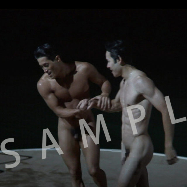 PR008_sample